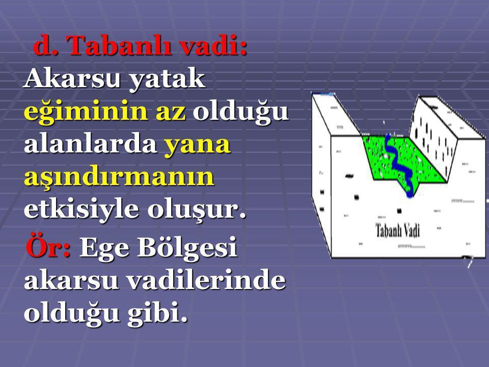 Aşağıdakilerden hangisi Türkiye akarsularının özelliklerinden değildir.