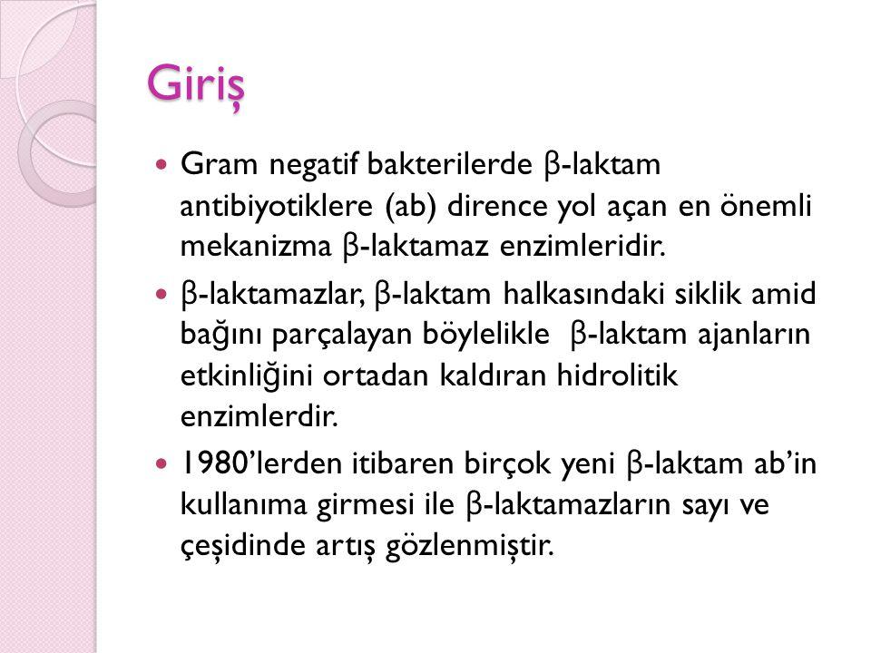 Genotipik Testler GSBL tiplerinin belirlenmesi amacı ile yapılmaktadır.