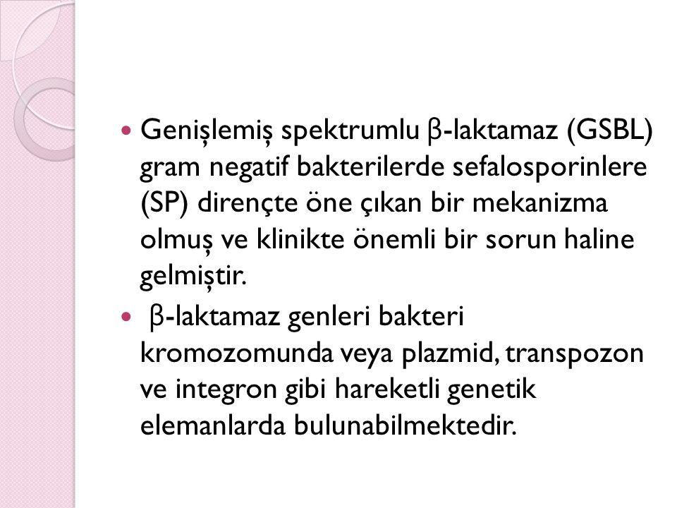 Hastane Enfeksiyon Kontrolü GSBL üreten Enterobacteriaceae ile di ğ er nozokomial gram (–) organizmaların hastane enfeksiyonu kontrolü genel olarak benzerdir.