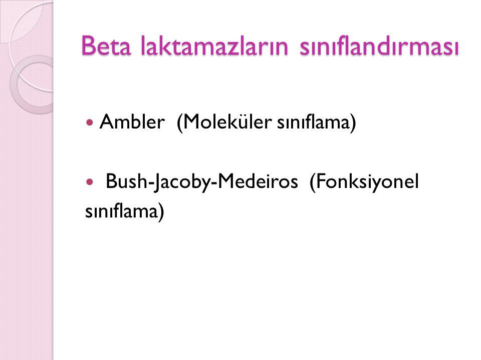 Ambler sınıflaması Enzimleri kodlayan nükleotid ve aa.