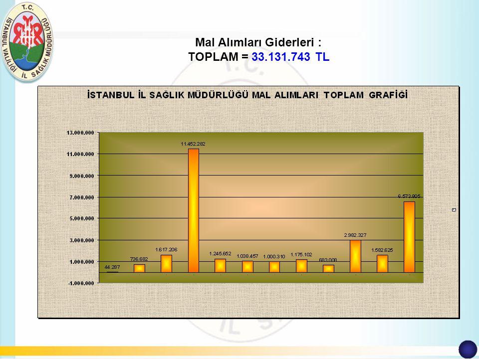 Mal Alımları Giderleri : TOPLAM = 33.131.743 TL