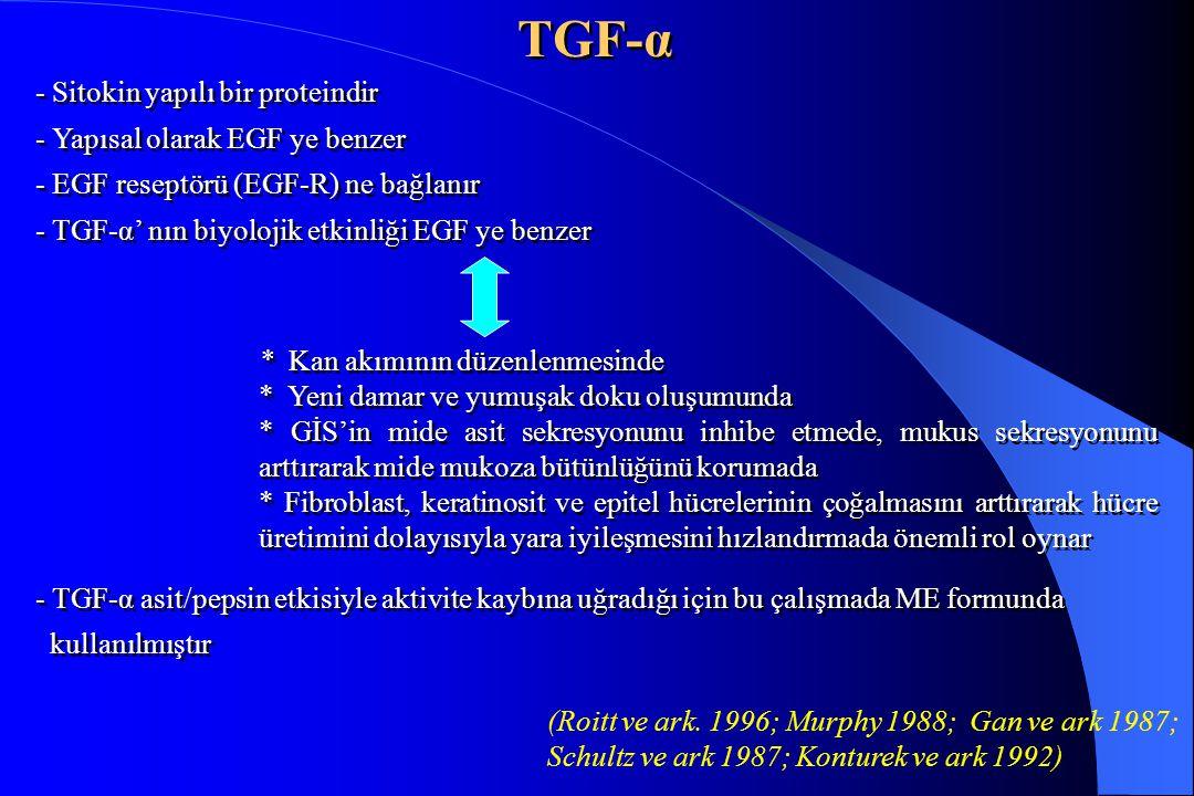 TGF-α - Sitokin yapılı bir proteindir - Yapısal olarak EGF ye benzer - EGF reseptörü (EGF-R) ne bağlanır - TGF-α' nın biyolojik etkinliği EGF ye benze