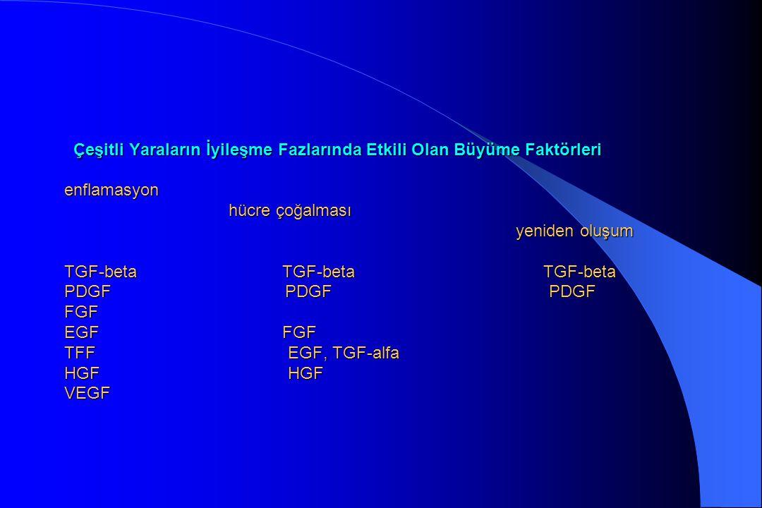 Çeşitli Yaraların İyileşme Fazlarında Etkili Olan Büyüme Faktörleri enflamasyon hücre çoğalması yeniden oluşum TGF-beta TGF-beta TGF-beta PDGF PDGF PD