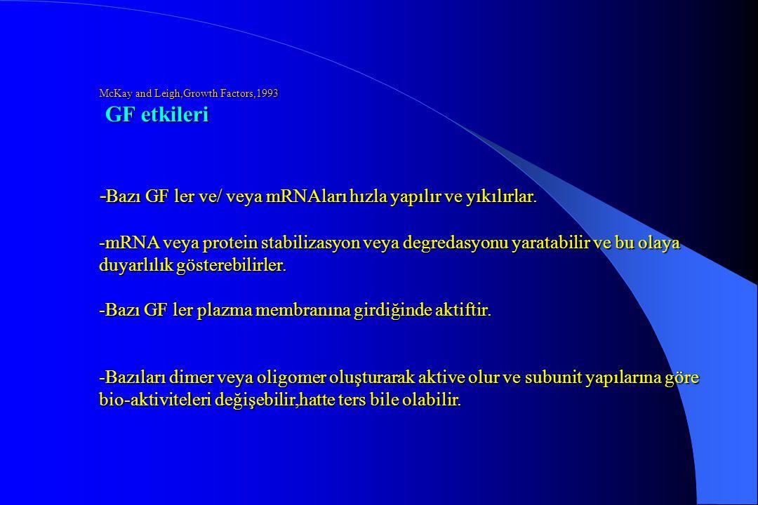 McKay and Leigh,Growth Factors,1993 GF etkileri - Bazı GF ler ve/ veya mRNAları hızla yapılır ve yıkılırlar. -mRNA veya protein stabilizasyon veya deg