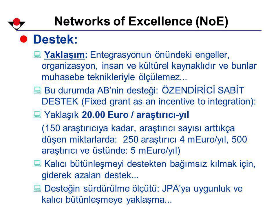Networks of Excellence (NoE) l Destek: : Yaklaşım: Entegrasyonun önündeki engeller, organizasyon, insan ve kültürel kaynaklıdır ve bunlar muhasebe teknikleriyle ölçülemez...