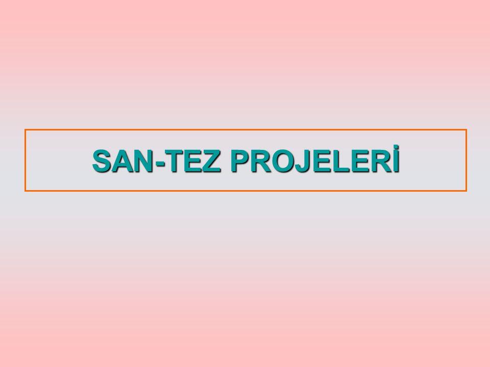 SAN-TEZ PROJELERİ