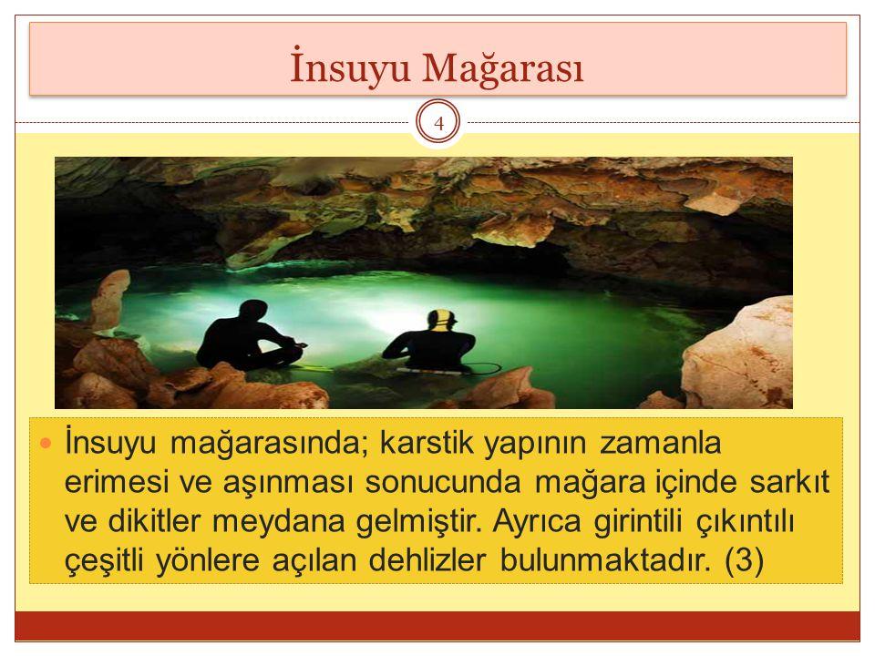 İnsuyu Mağarası İnsuyu mağarasında; karstik yapının zamanla erimesi ve aşınması sonucunda mağara içinde sarkıt ve dikitler meydana gelmiştir.