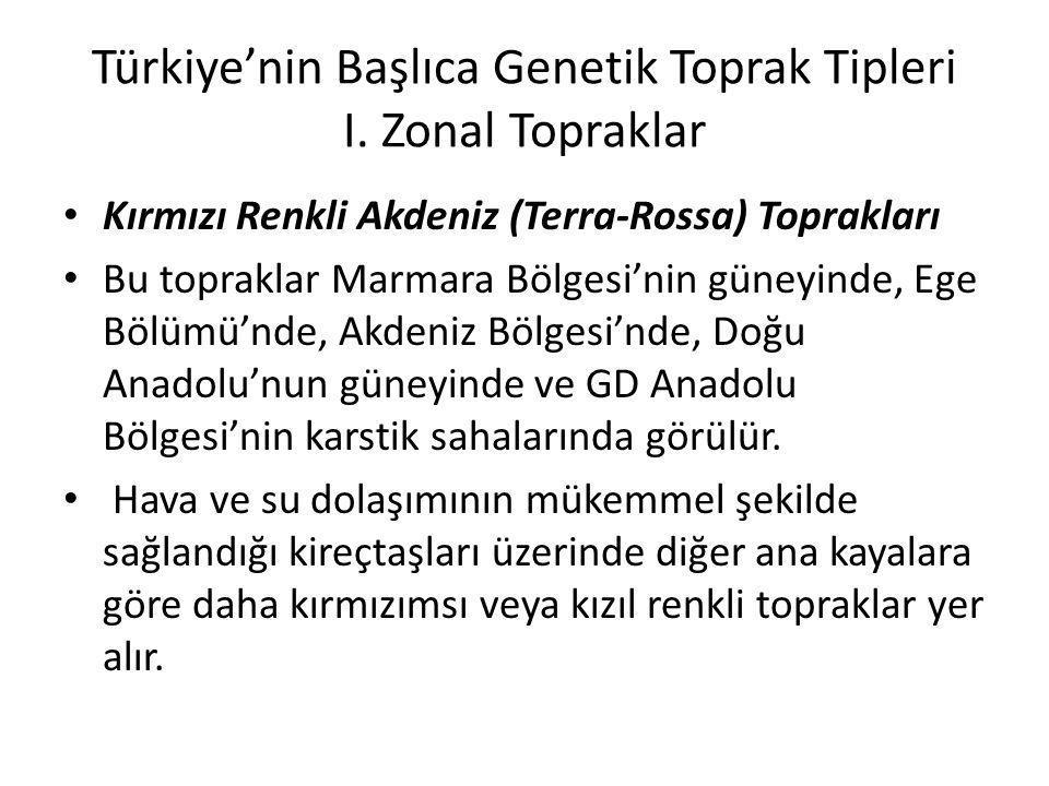 Türkiye'nin Başlıca Genetik Toprak Tipleri I. Zonal Topraklar Kırmızı Renkli Akdeniz (Terra-Rossa) Toprakları Bu topraklar Marmara Bölgesi'nin güneyin