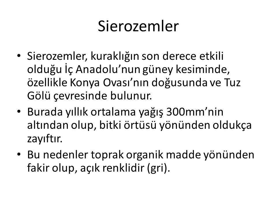 Sierozemler Sierozemler, kuraklığın son derece etkili olduğu İç Anadolu'nun güney kesiminde, özellikle Konya Ovası'nın doğusunda ve Tuz Gölü çevresind