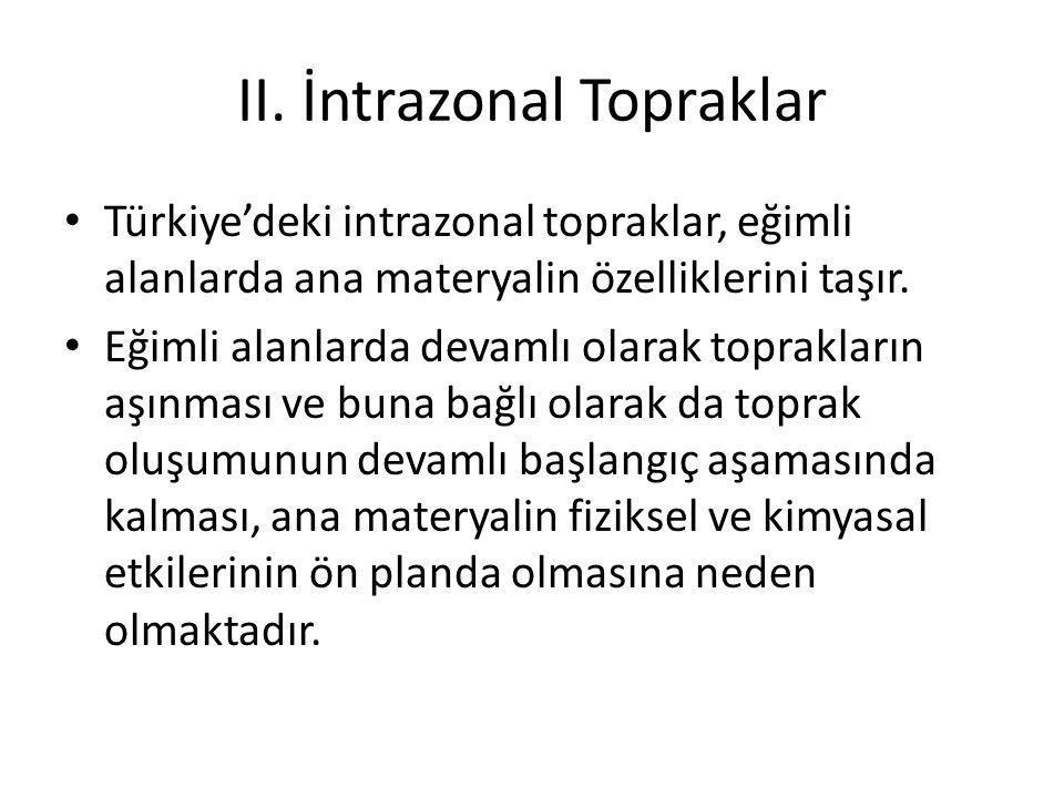 II. İntrazonal Topraklar Türkiye'deki intrazonal topraklar, eğimli alanlarda ana materyalin özelliklerini taşır. Eğimli alanlarda devamlı olarak topra