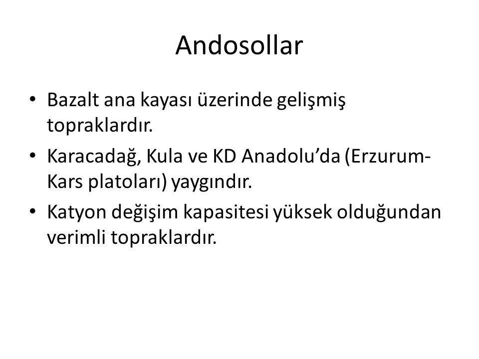 Andosollar Bazalt ana kayası üzerinde gelişmiş topraklardır. Karacadağ, Kula ve KD Anadolu'da (Erzurum- Kars platoları) yaygındır. Katyon değişim kapa