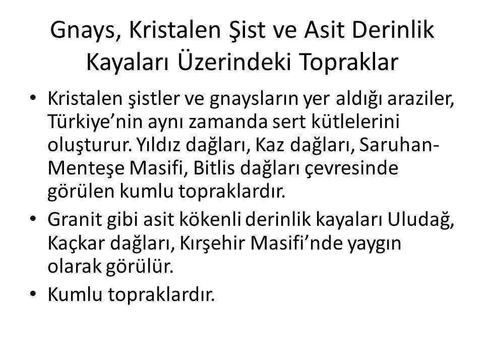 Gnays, Kristalen Şist ve Asit Derinlik Kayaları Üzerindeki Topraklar Kristalen şistler ve gnaysların yer aldığı araziler, Türkiye'nin aynı zamanda ser
