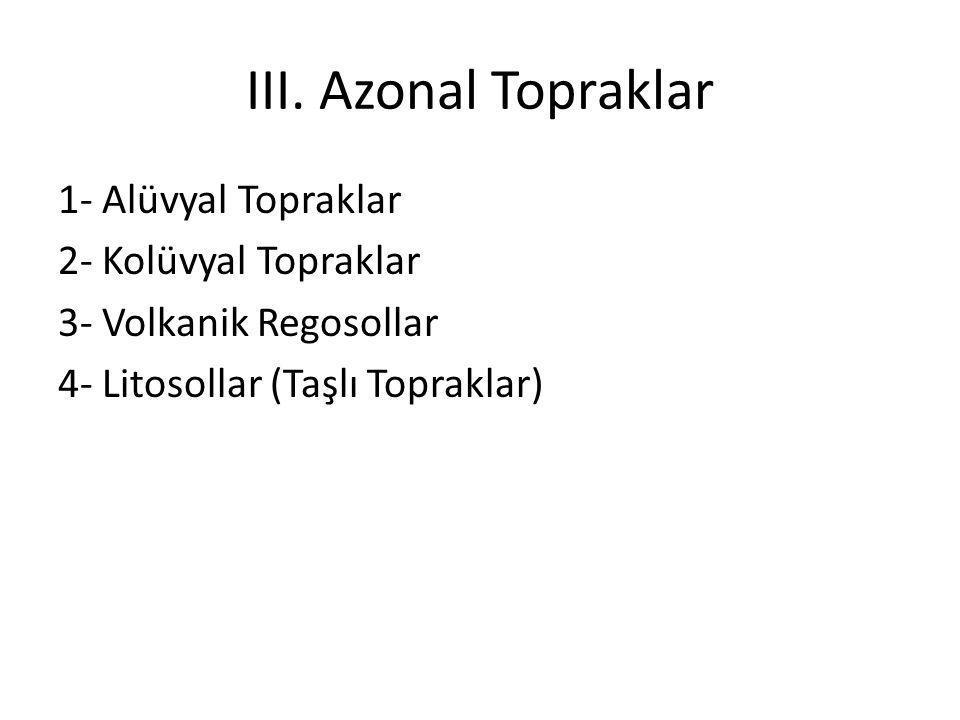 III. Azonal Topraklar 1- Alüvyal Topraklar 2- Kolüvyal Topraklar 3- Volkanik Regosollar 4- Litosollar (Taşlı Topraklar)