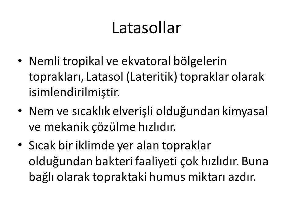 Latasollar Nemli tropikal ve ekvatoral bölgelerin toprakları, Latasol (Lateritik) topraklar olarak isimlendirilmiştir. Nem ve sıcaklık elverişli olduğ