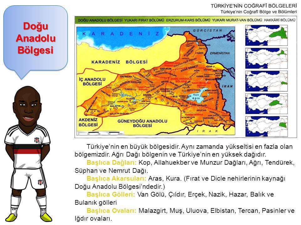 Doğu Anadolu Bölgesi Türkiye'nin en büyük bölgesidir. Aynı zamanda yükseltisi en fazla olan bölgemizdir. Ağrı Dağı bölgenin ve Türkiye'nin en yüksek d