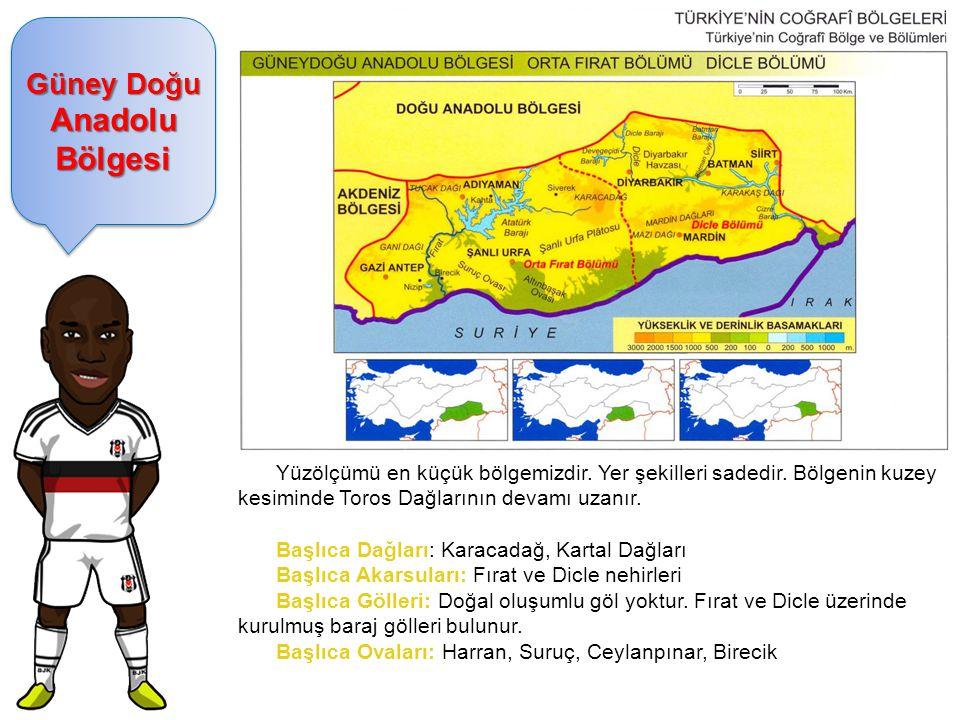 Güney Doğu Anadolu Bölgesi Yüzölçümü en küçük bölgemizdir. Yer şekilleri sadedir. Bölgenin kuzey kesiminde Toros Dağlarının devamı uzanır. Başlıca Dağ