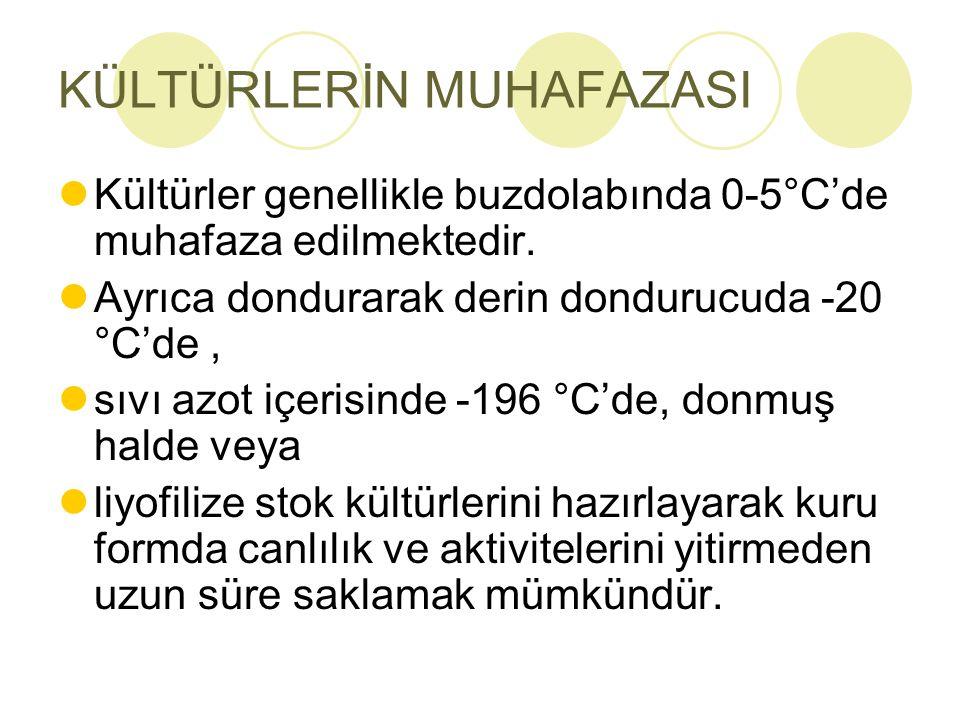 KÜLTÜRLERİN MUHAFAZASI Kültürler genellikle buzdolabında 0-5°C'de muhafaza edilmektedir. Ayrıca dondurarak derin dondurucuda -20 °C'de, sıvı azot içer