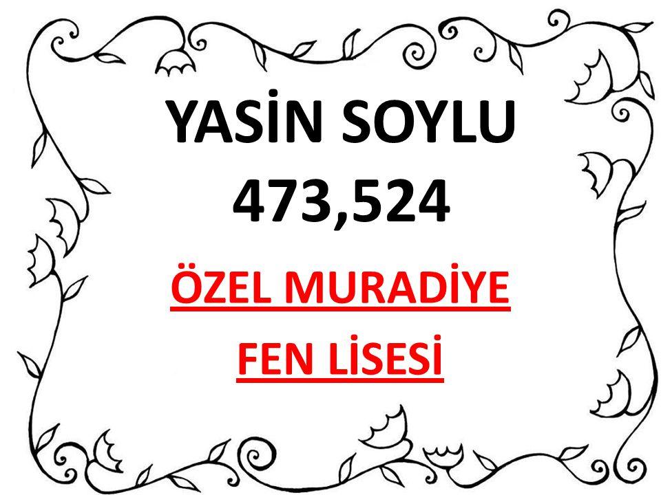 YASİN SOYLU 473,524 ÖZEL MURADİYE FEN LİSESİ