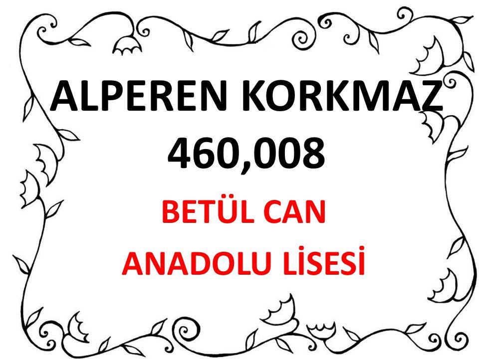 ALPEREN KORKMAZ 460,008 BETÜL CAN ANADOLU LİSESİ