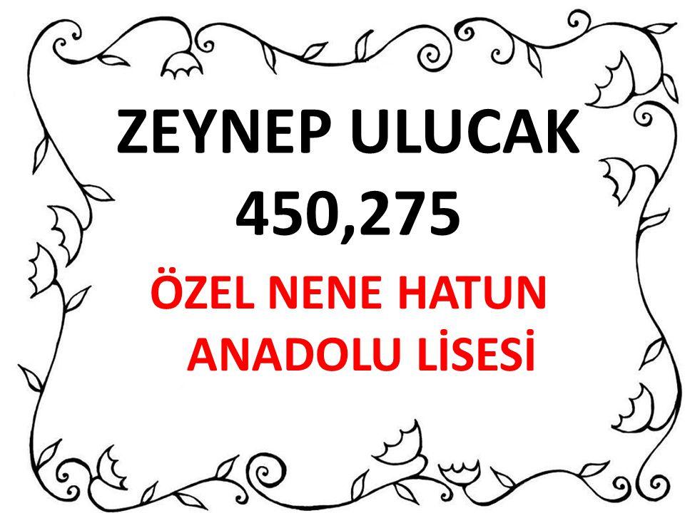 ZEYNEP ULUCAK 450,275 ÖZEL NENE HATUN ANADOLU LİSESİ