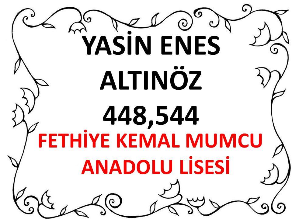 YASİN ENES ALTINÖZ 448,544 FETHİYE KEMAL MUMCU ANADOLU LİSESİ