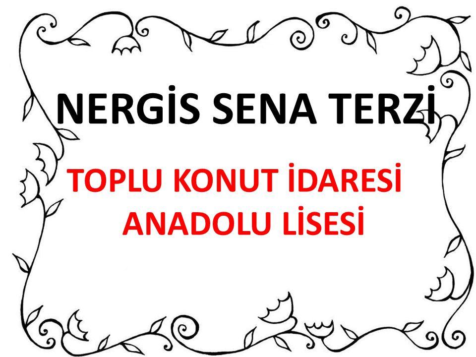 NERGİS SENA TERZİ TOPLU KONUT İDARESİ ANADOLU LİSESİ