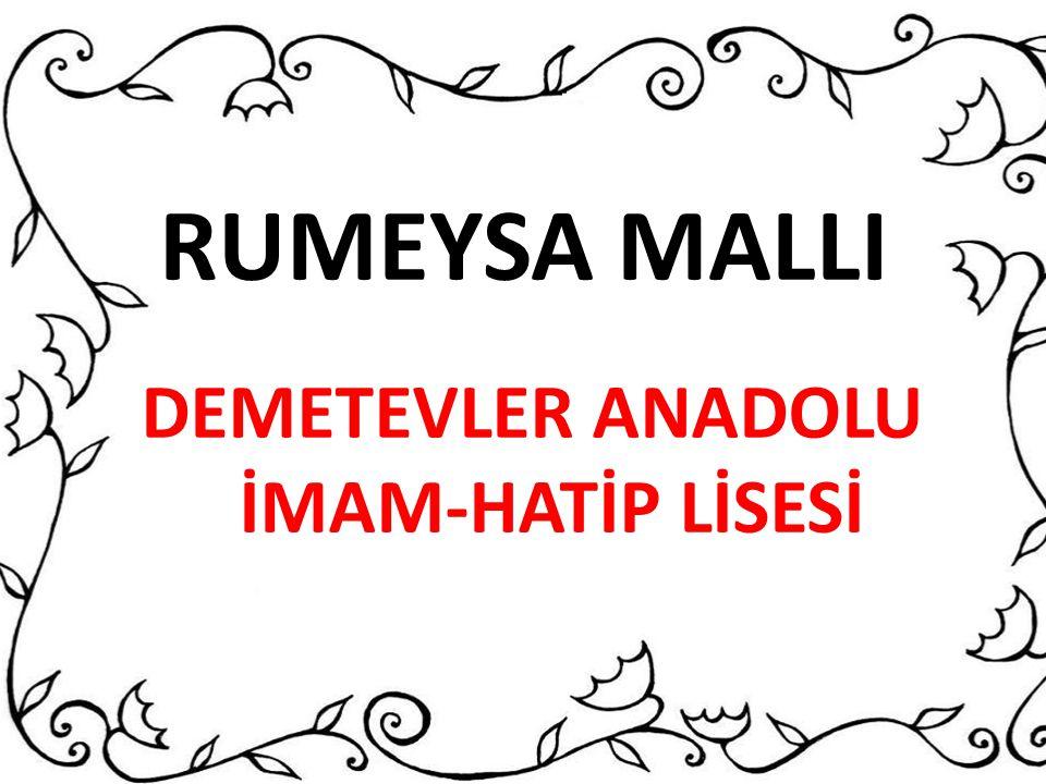 RUMEYSA MALLI DEMETEVLER ANADOLU İMAM-HATİP LİSESİ