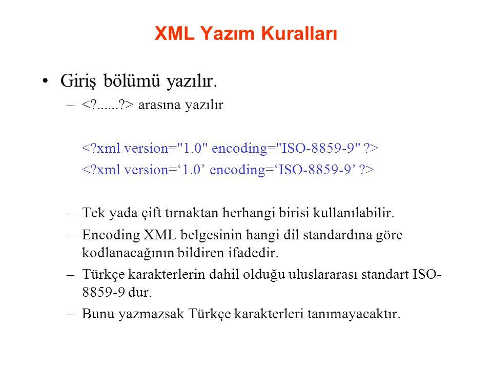 XML Yazım Kuralları Giriş bölümü yazılır.