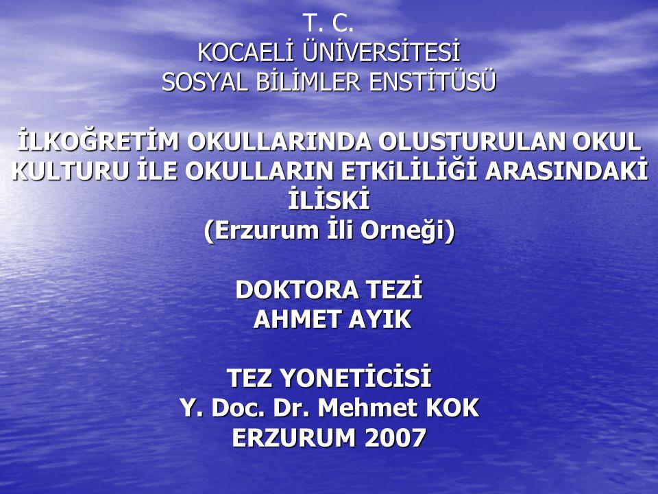KOCAELİ ÜNİVERSİTESİ SOSYAL BİLİMLER ENSTİTÜSÜ İLKOĞRETİM OKULLARINDA OLUSTURULAN OKUL KULTURU İLE OKULLARIN ETKiLİLİĞİ ARASINDAKİ İLİSKİ (Erzurum İli