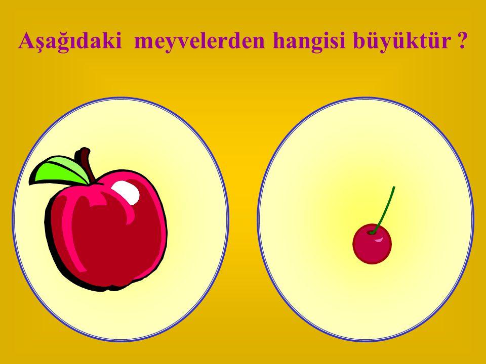 Aşağıdaki meyvelerden hangisi büyüktür ?