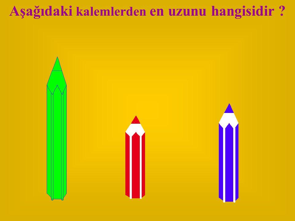 Aşağıdaki kalemlerden en uzunu hangisidir ?
