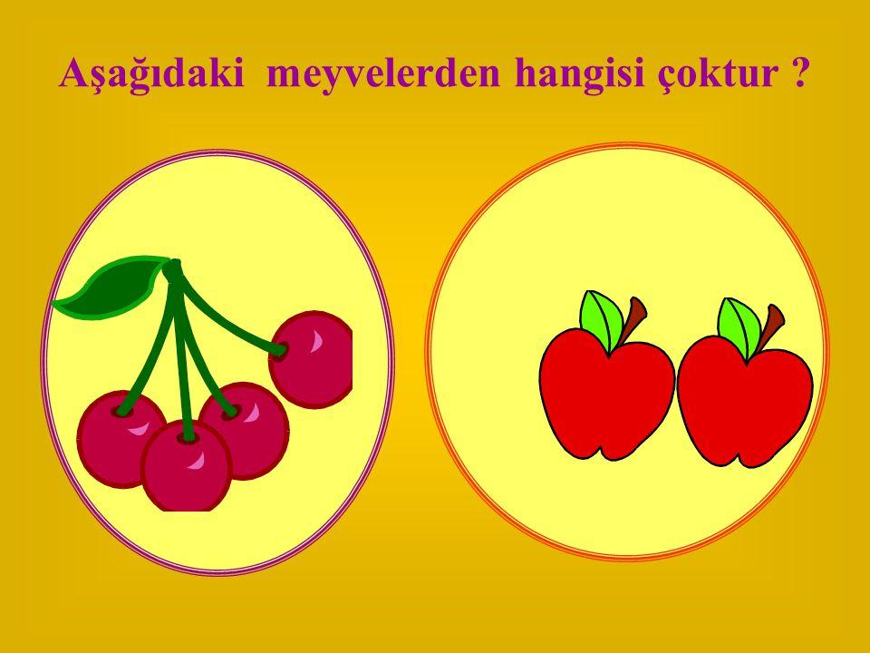 Aşağıdaki meyvelerden hangisi çoktur ?