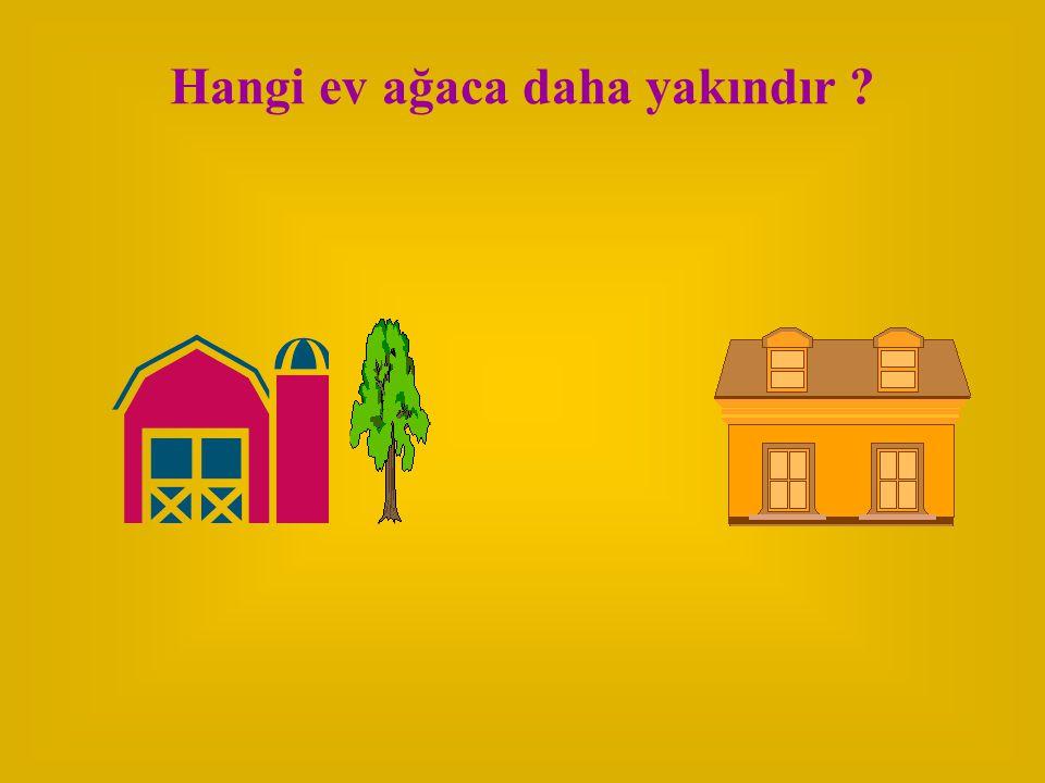 Hangi ev ağaca daha yakındır ?