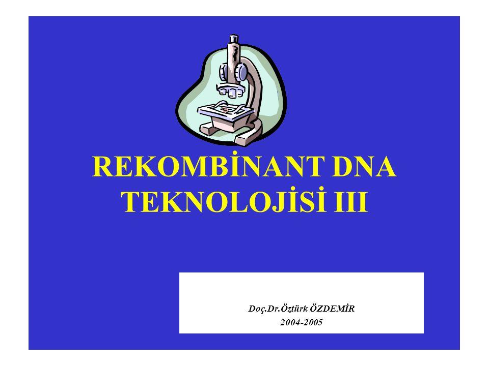 REKOMBİNANT DNA TEKNOLOJİSİ III Doç.Dr.Öztürk ÖZDEMİR 2004-2005
