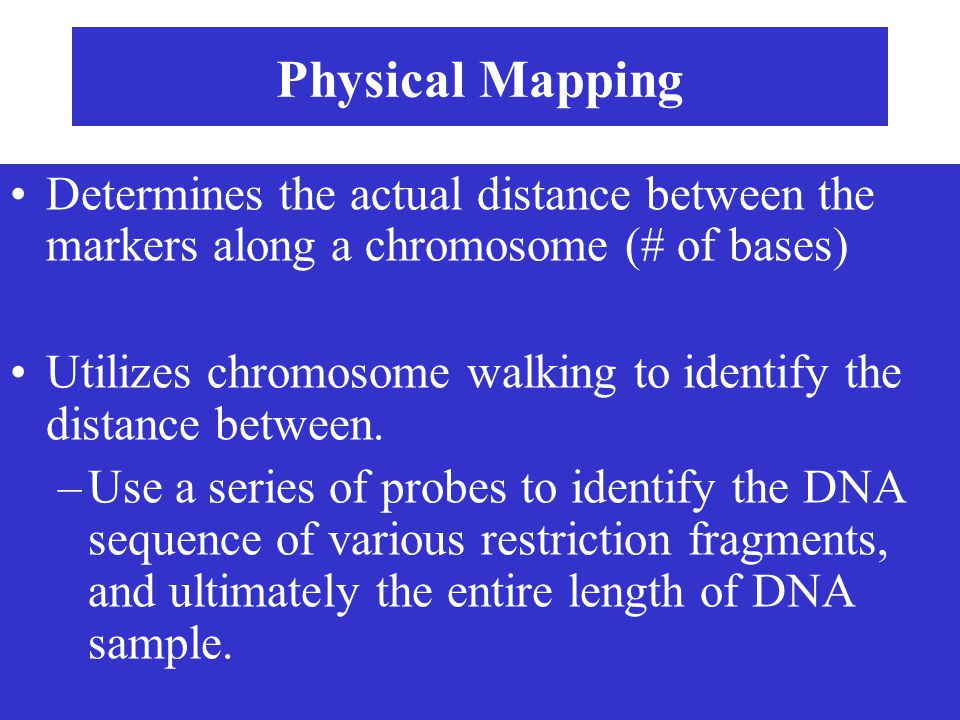 Physical Mapping Determines the actual distance between the markers along a chromosome (# of bases) Utilizes chromosome walking to identify the distan