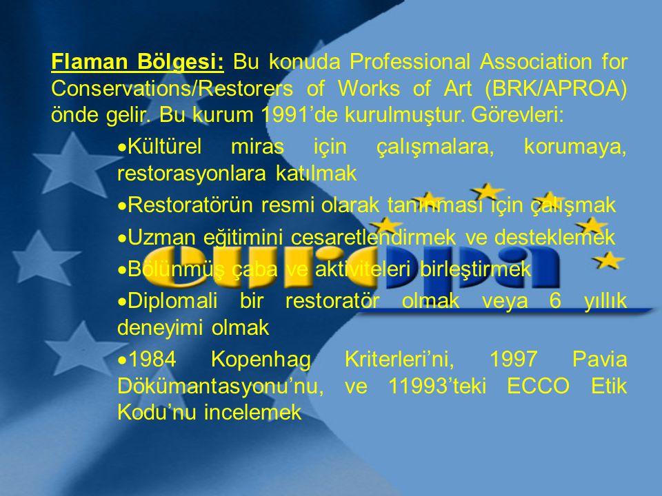 Flaman Bölgesi: Bu konuda Professional Association for Conservations/Restorers of Works of Art (BRK/APROA) önde gelir. Bu kurum 1991'de kurulmuştur. G