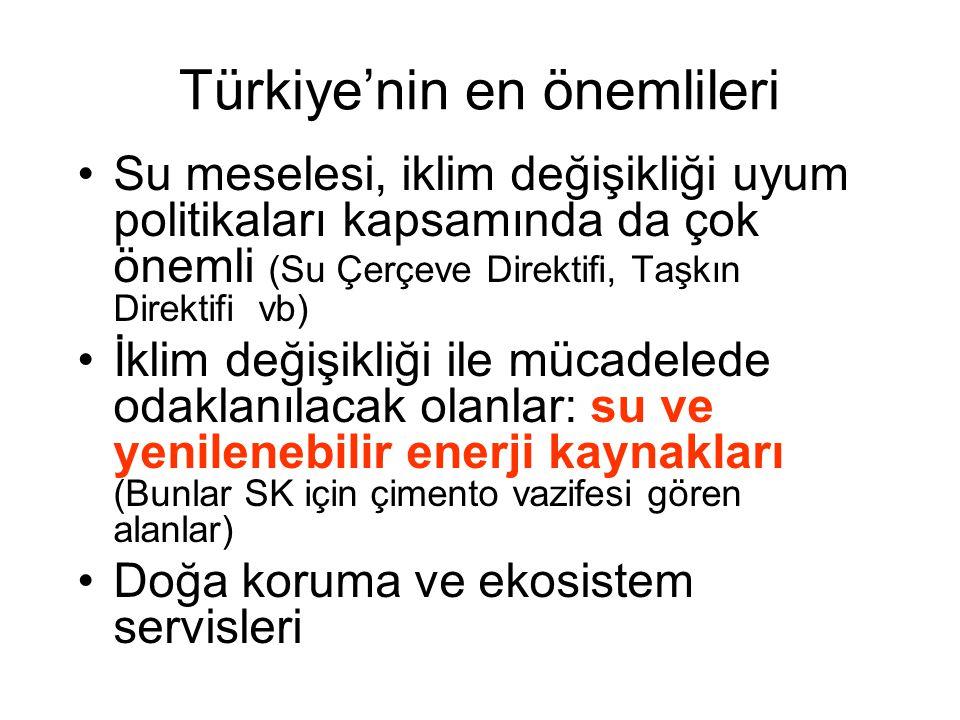 Türkiye'nin en önemlileri Su meselesi, iklim değişikliği uyum politikaları kapsamında da çok önemli (Su Çerçeve Direktifi, Taşkın Direktifi vb) İklim değişikliği ile mücadelede odaklanılacak olanlar: su ve yenilenebilir enerji kaynakları (Bunlar SK için çimento vazifesi gören alanlar) Doğa koruma ve ekosistem servisleri