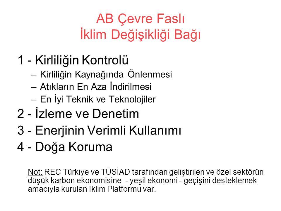 AB Çevre Faslı İklim Değişikliği Bağı 1 - Kirliliğin Kontrolü –Kirliliğin Kaynağında Önlenmesi –Atıkların En Aza İndirilmesi –En İyi Teknik ve Teknolojiler 2 - İzleme ve Denetim 3 - Enerjinin Verimli Kullanımı 4 - Doğa Koruma Not: REC Türkiye ve TÜSİAD tarafından geliştirilen ve özel sektörün düşük karbon ekonomisine - yeşil ekonomi - geçişini desteklemek amacıyla kurulan İklim Platformu var.