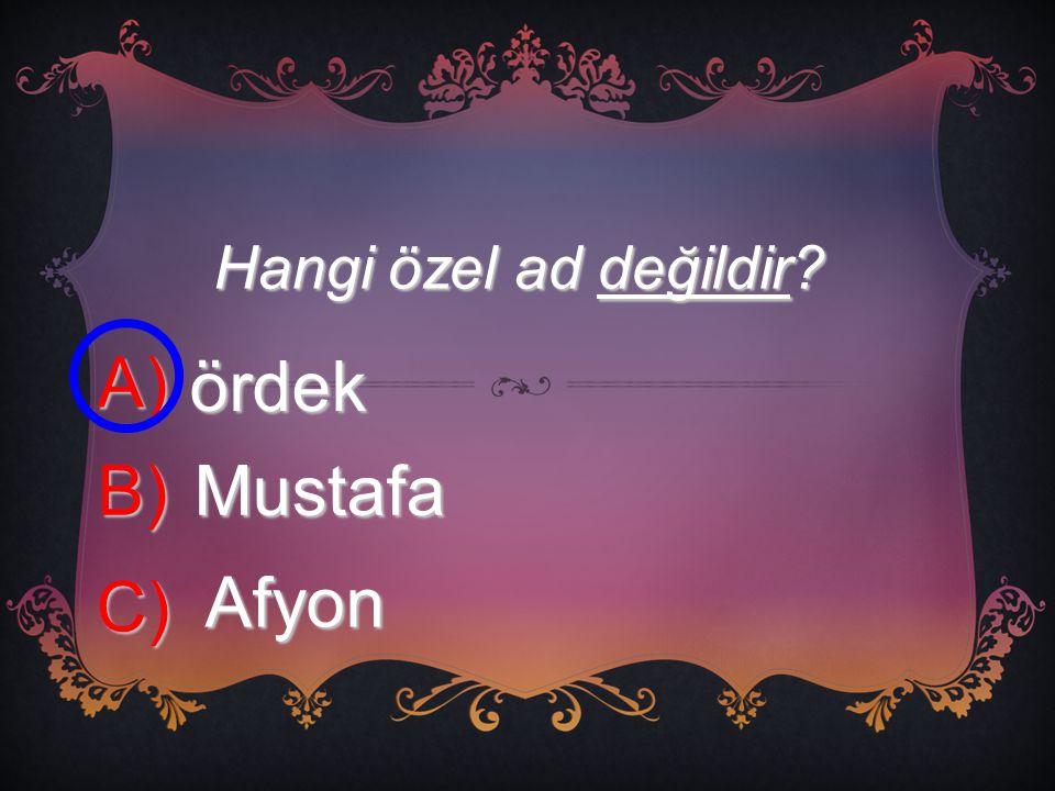 Hangi özel ad değildir? A) ördek B) Mustafa C) Afyon
