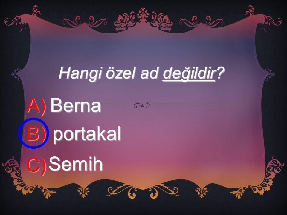 Hangi özel ad değildir? A) Berna B) portakal C) Semih