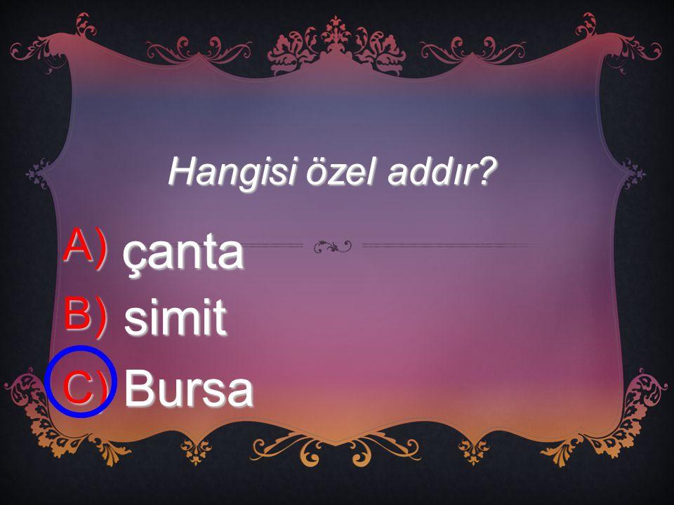 Hangisi özel addır? A) çanta B) simit C) Bursa