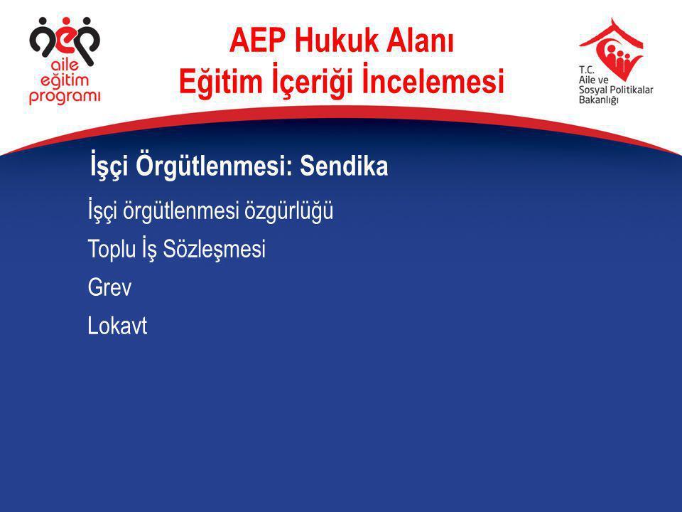 İşçi örgütlenmesi özgürlüğü Toplu İş Sözleşmesi Grev Lokavt İşçi Örgütlenmesi: Sendika AEP Hukuk Alanı Eğitim İçeriği İncelemesi
