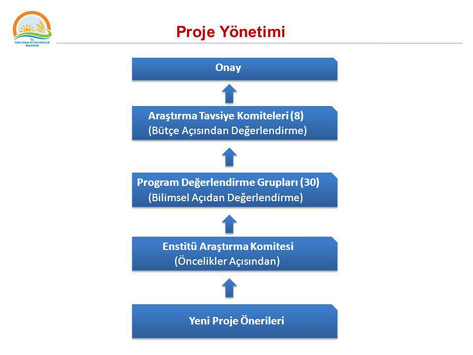 Proje Yönetimi Onay Araştırma Tavsiye Komiteleri (8) (Bütçe Açısından Değerlendirme) Program Değerlendirme Grupları (30) (Bilimsel Açıdan Değerlendirm