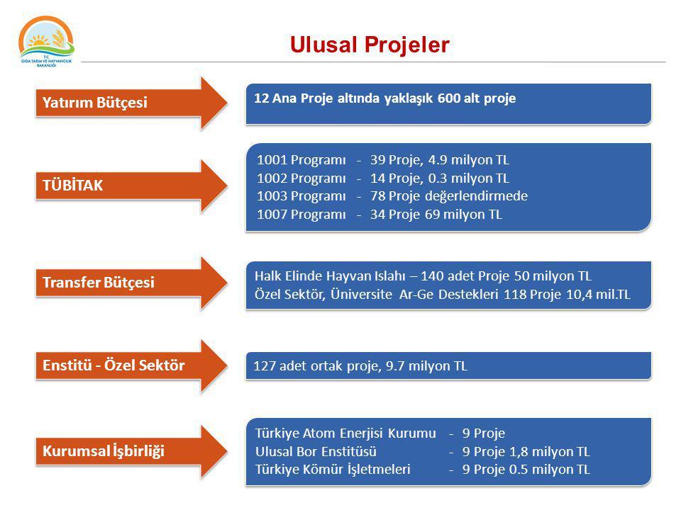 Ulusal Projeler Yatırım Bütçesi TÜBİTAK Kurumsal İşbirliği 12 Ana Proje altında yaklaşık 600 alt proje 1001 Programı-39 Proje, 4.9 milyon TL 1002 Prog