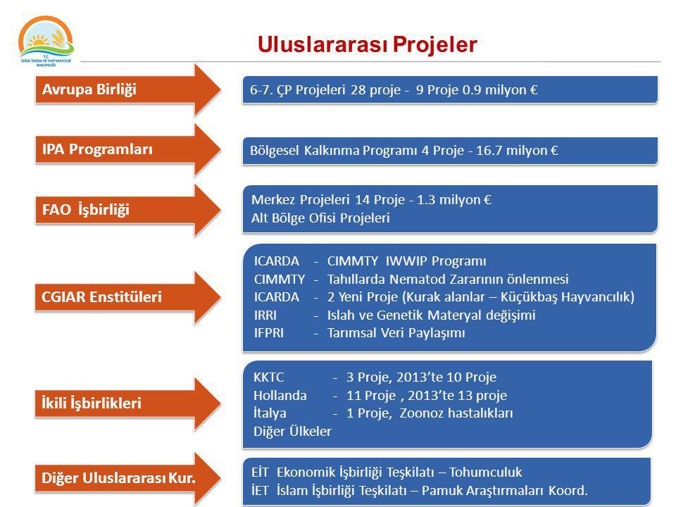 Uluslararası Projeler Avrupa Birliği 6-7. ÇP Projeleri 28 proje - 9 Proje 0.9 milyon € IPA Programları Bölgesel Kalkınma Programı 4 Proje - 16.7 milyo