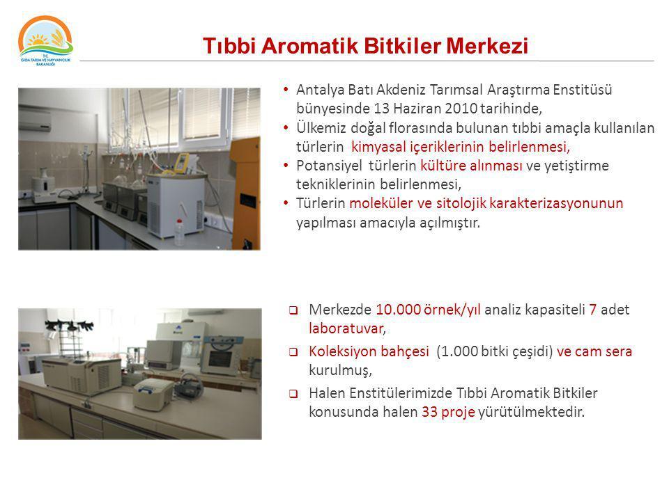 Tıbbi Aromatik Bitkiler Merkezi Antalya Batı Akdeniz Tarımsal Araştırma Enstitüsü bünyesinde 13 Haziran 2010 tarihinde, Ülkemiz doğal florasında bulun