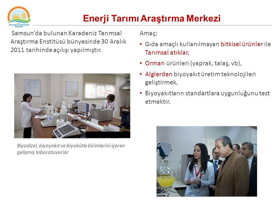Samsun'da bulunan Karadeniz Tarımsal Araştırma Enstitüsü bünyesinde 30 Aralık 2011 tarihinde açılışı yapılmıştır. Enerji Tarımı Araştırma Merkezi Amaç