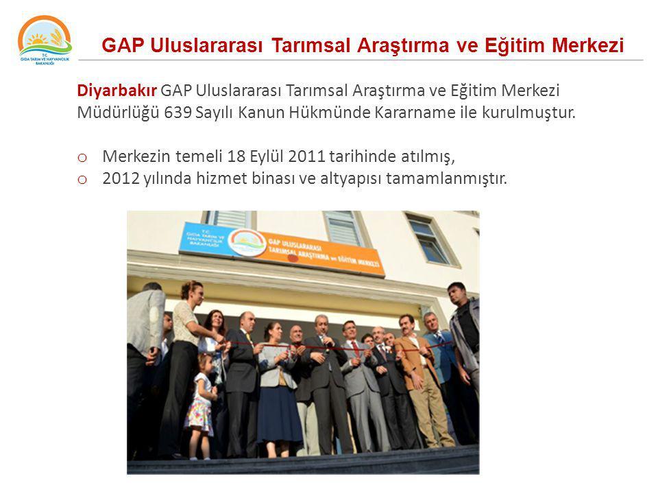 Diyarbakır GAP Uluslararası Tarımsal Araştırma ve Eğitim Merkezi Müdürlüğü 639 Sayılı Kanun Hükmünde Kararname ile kurulmuştur. o Merkezin temeli 18 E