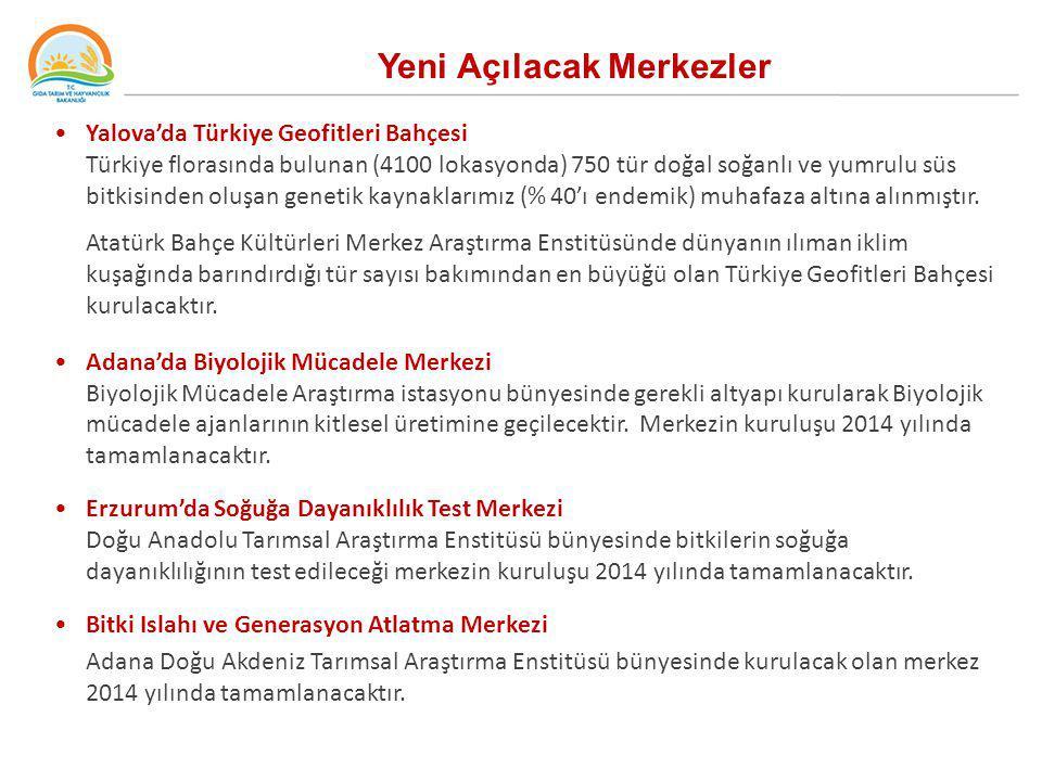 Yeni Açılacak Merkezler Yalova'da Türkiye Geofitleri Bahçesi Türkiye florasında bulunan (4100 lokasyonda) 750 tür doğal soğanlı ve yumrulu süs bitkisi