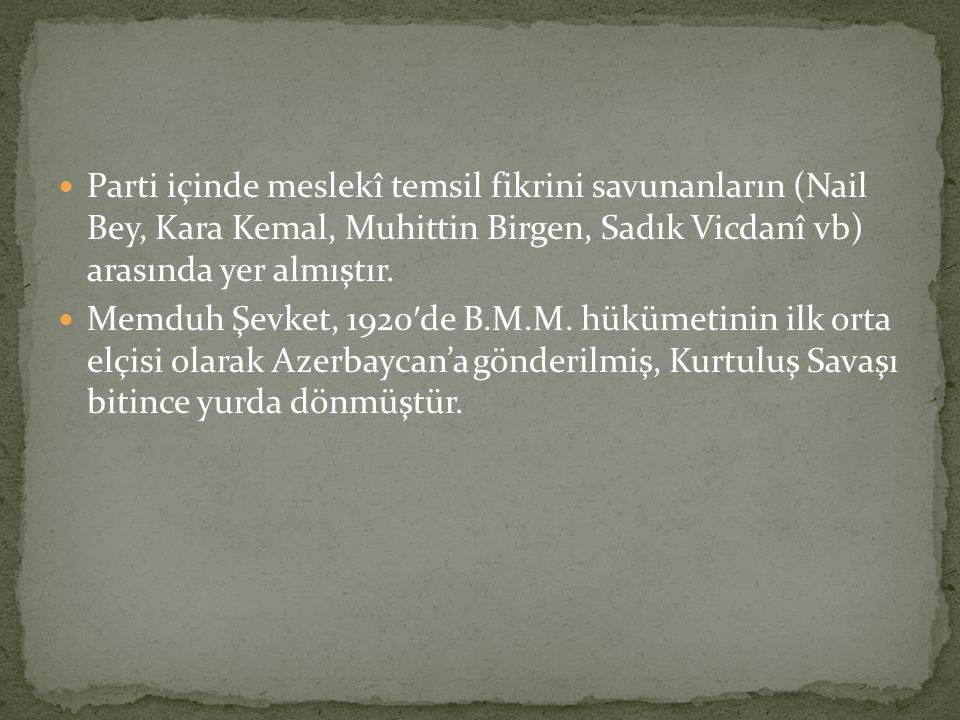 Parti içinde meslekî temsil fikrini savunanların (Nail Bey, Kara Kemal, Muhittin Birgen, Sadık Vicdanî vb) arasında yer almıştır.